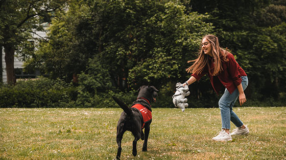 Image shows female student playing with a black Labrador - one of the MDX help dogs