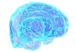 HPC brain thumbnail.jpg